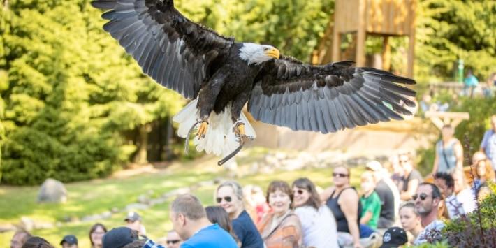 Spielplatz im Wildpark Lüneburger Heide