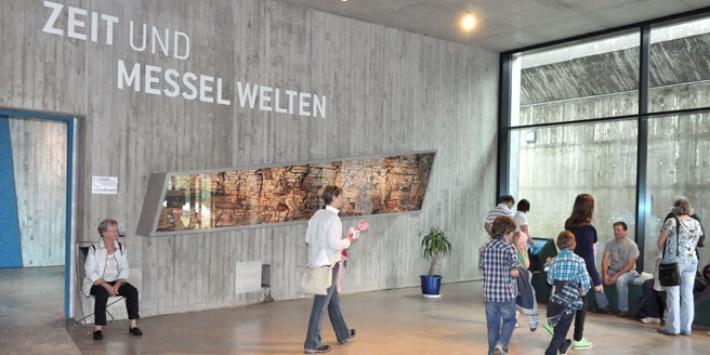 Foyer Besucherzentrum Grube Messel