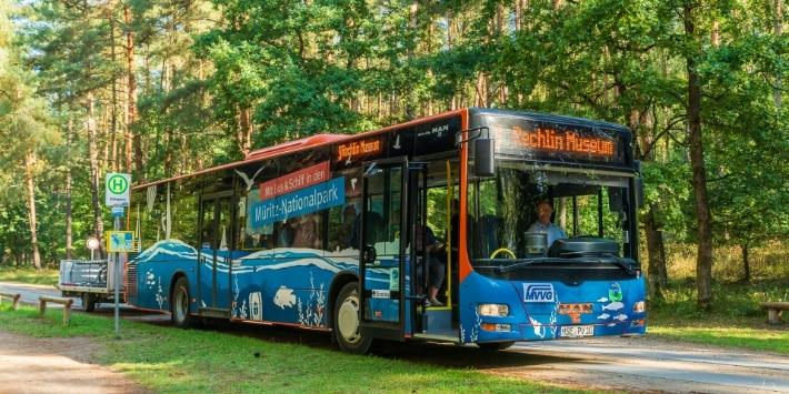 Bus im Müritz Nationalpark