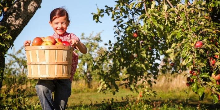 Mädchen mit Äpfeln