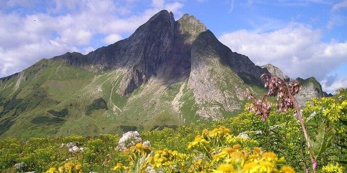 Gipfel eines Berges mit Blumen im Vordergrund