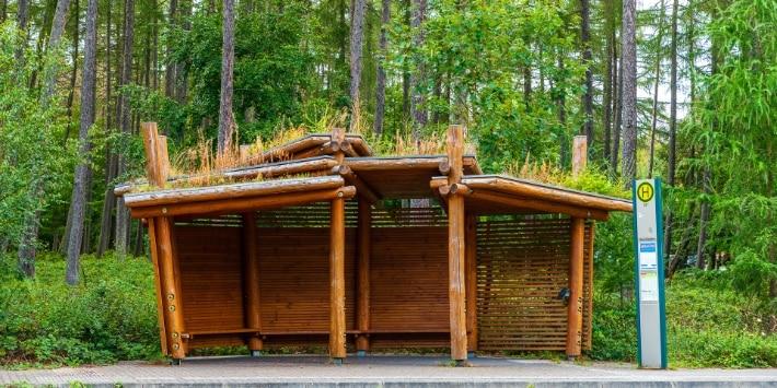 Bushaltestelle im Wald