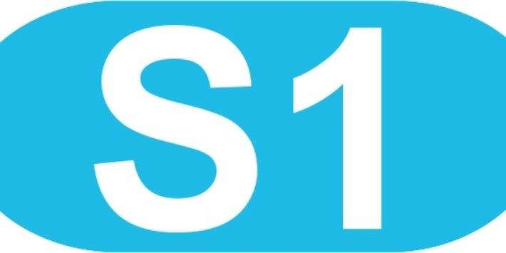 Signet S1