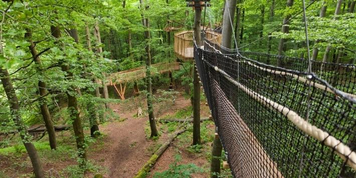 Das Aushängeschild am Baumkronenpfad Hoherodskopf im hohen Vogelsberg. Die berühmten Hängebrücken