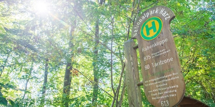 Bushaltestelle im Nationalpark Harz