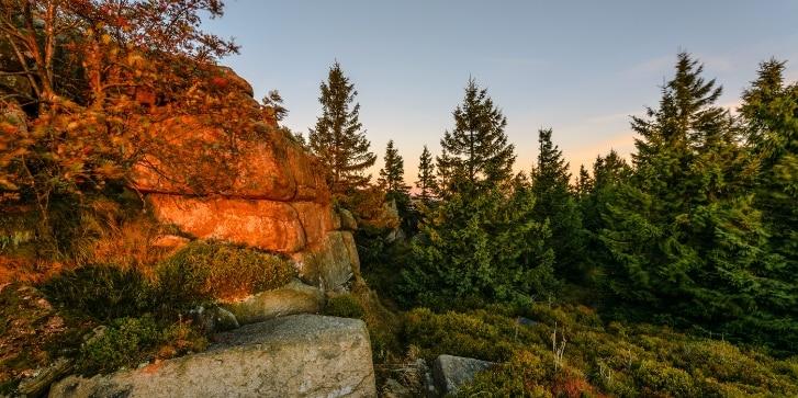Harz Landschaft