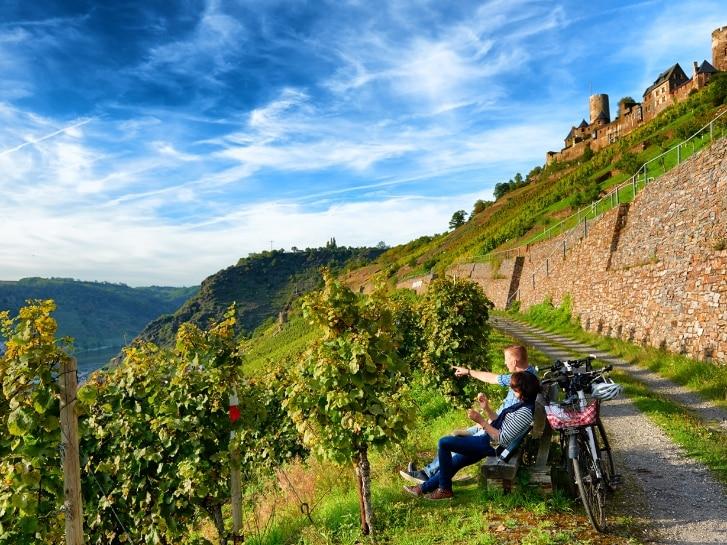 Fahrradfahrer rasten an den Weinbergen
