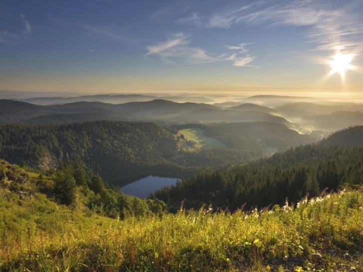 View on Lake Feldsee