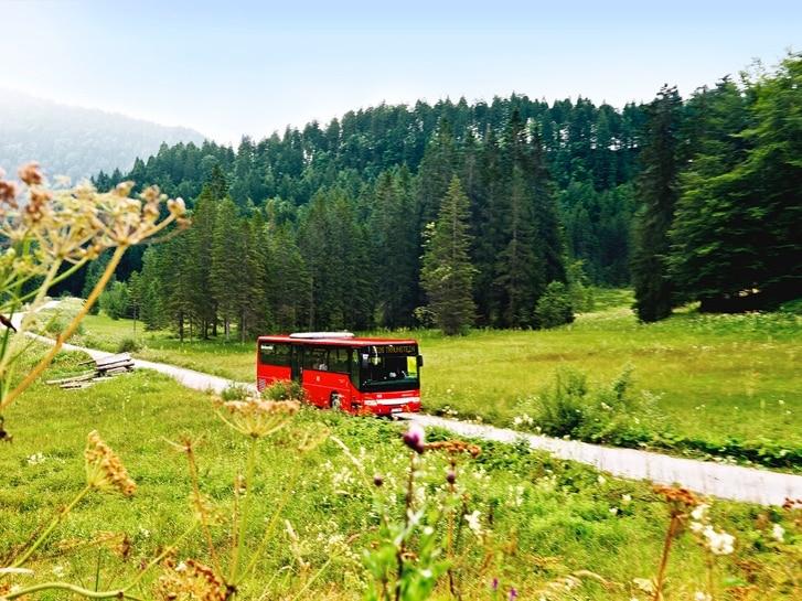 22. Fahrtziel Natur: Ammergauer Alpen