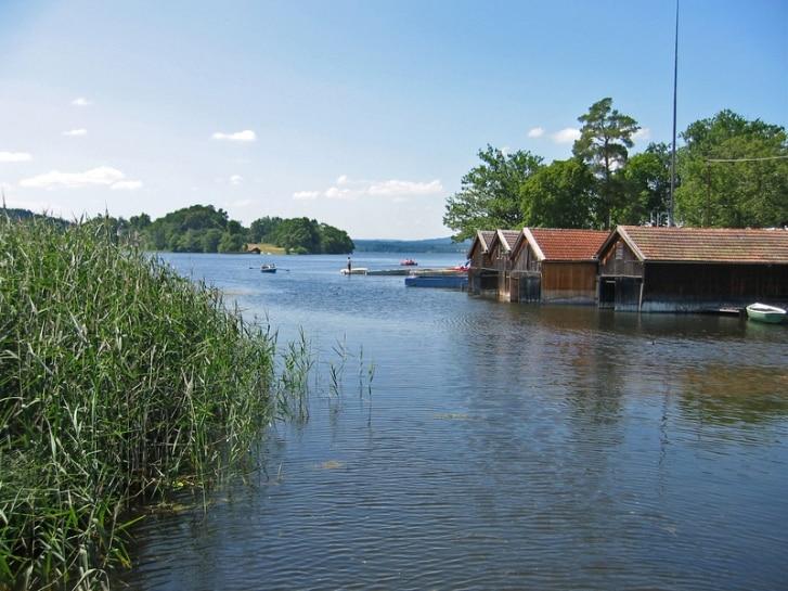 Schilf und Häuschen am See