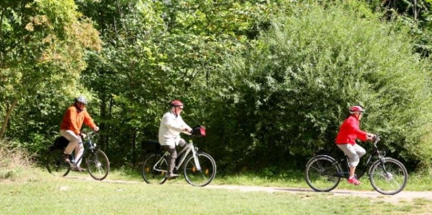 Radfahrer auf dem Müritz-Rundweg