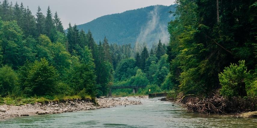 Ammergauer Alpen Fluss