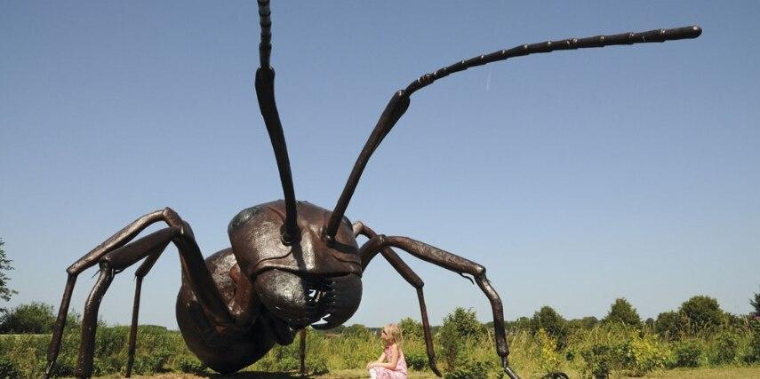 Riesenameise im  Familien-Freizeitpark Tolk-Schau