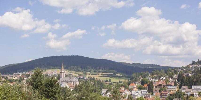 view of Neustadt