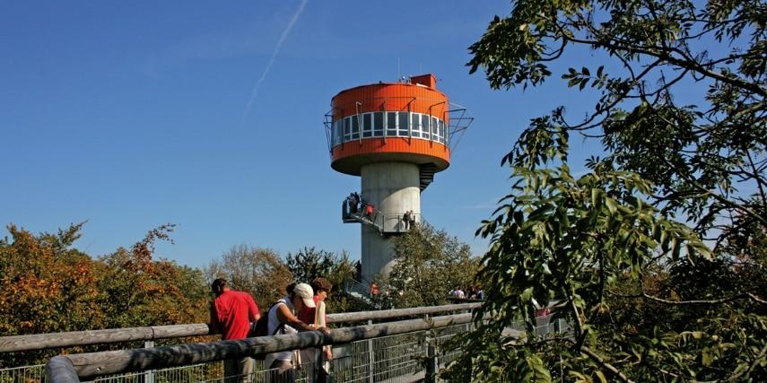 Turm im Baumkronenpfad