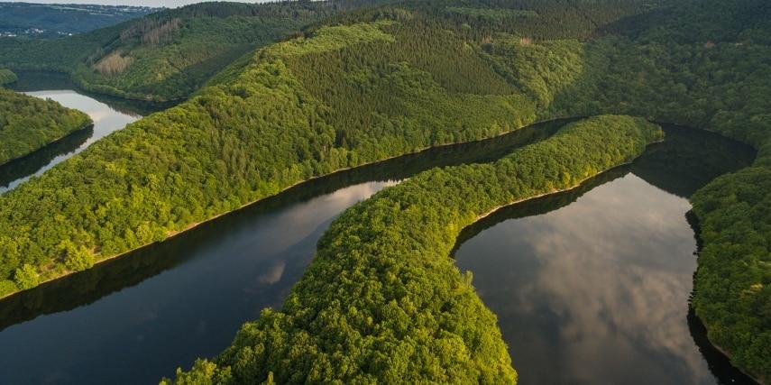 Landschaft im Nationalpark Eifel