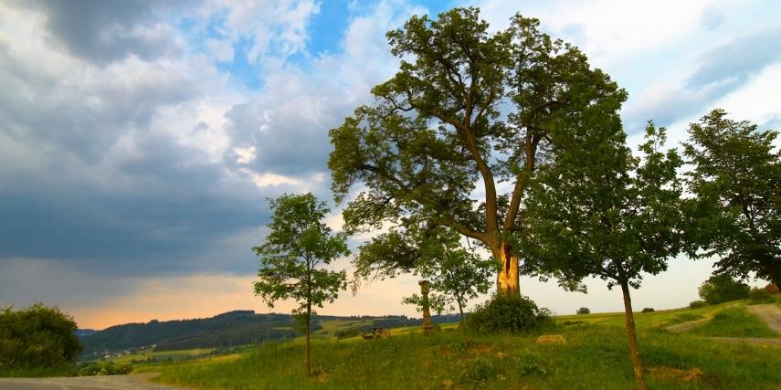 Landschaftsimpression Naturpark Frankenwald