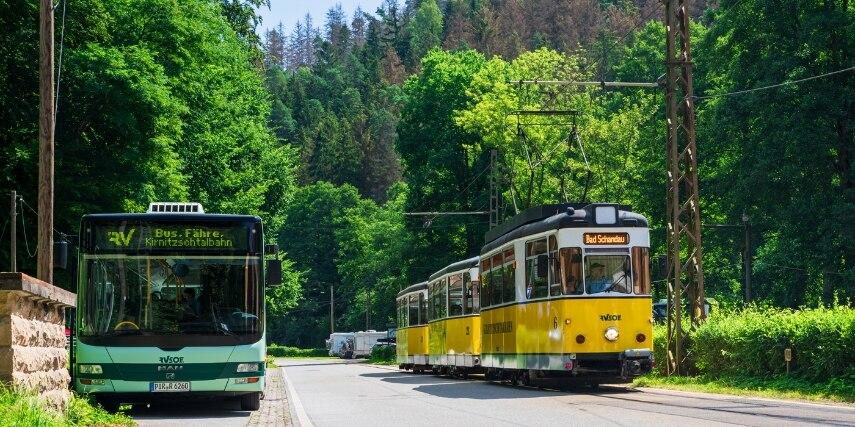 Bus und Tram Wald