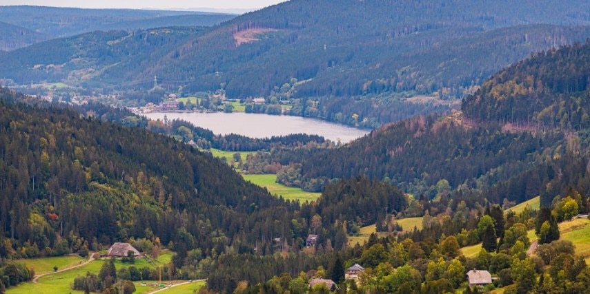 Schwarzwald Landschaft mit See