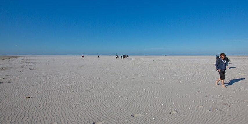 Norderoogsand