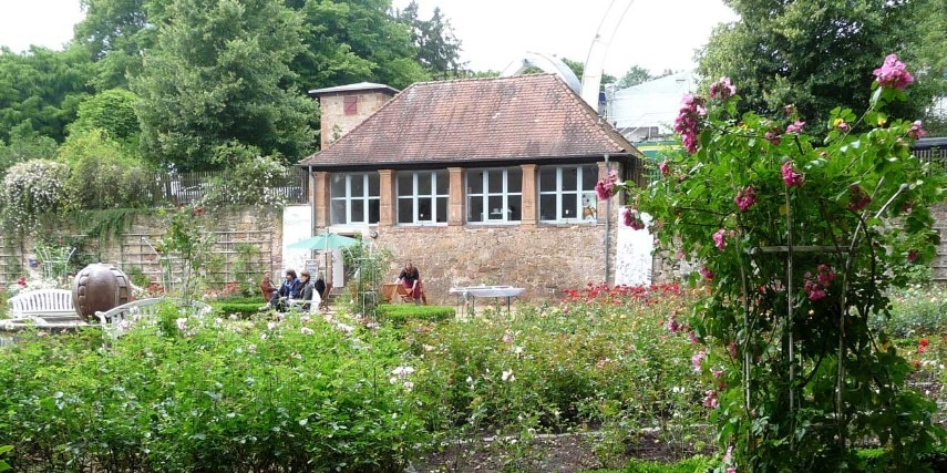 Rosengarten im Schloßpark Marburg