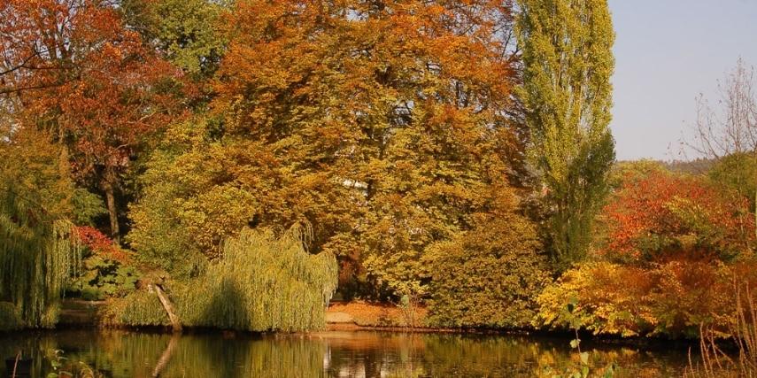 Alter Botanischer Garten in Marburg im Herbst