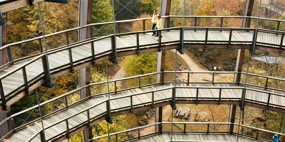 Baumwipfelpfad im Nationalpark Bayerischer Wald, Glasgang