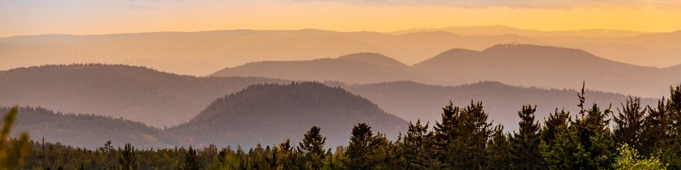 Schwarzwald Landschaft