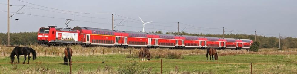 Zug Expresskreuz Niedersachsen-Bremen und Pferde