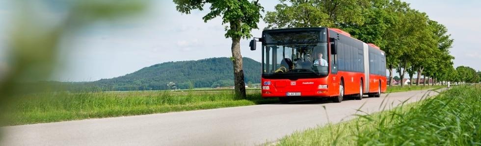 DB Regio Bus vor Bäumen, Moodbild