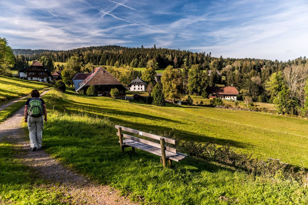 Panorama, Ibach-Schluchtensteig