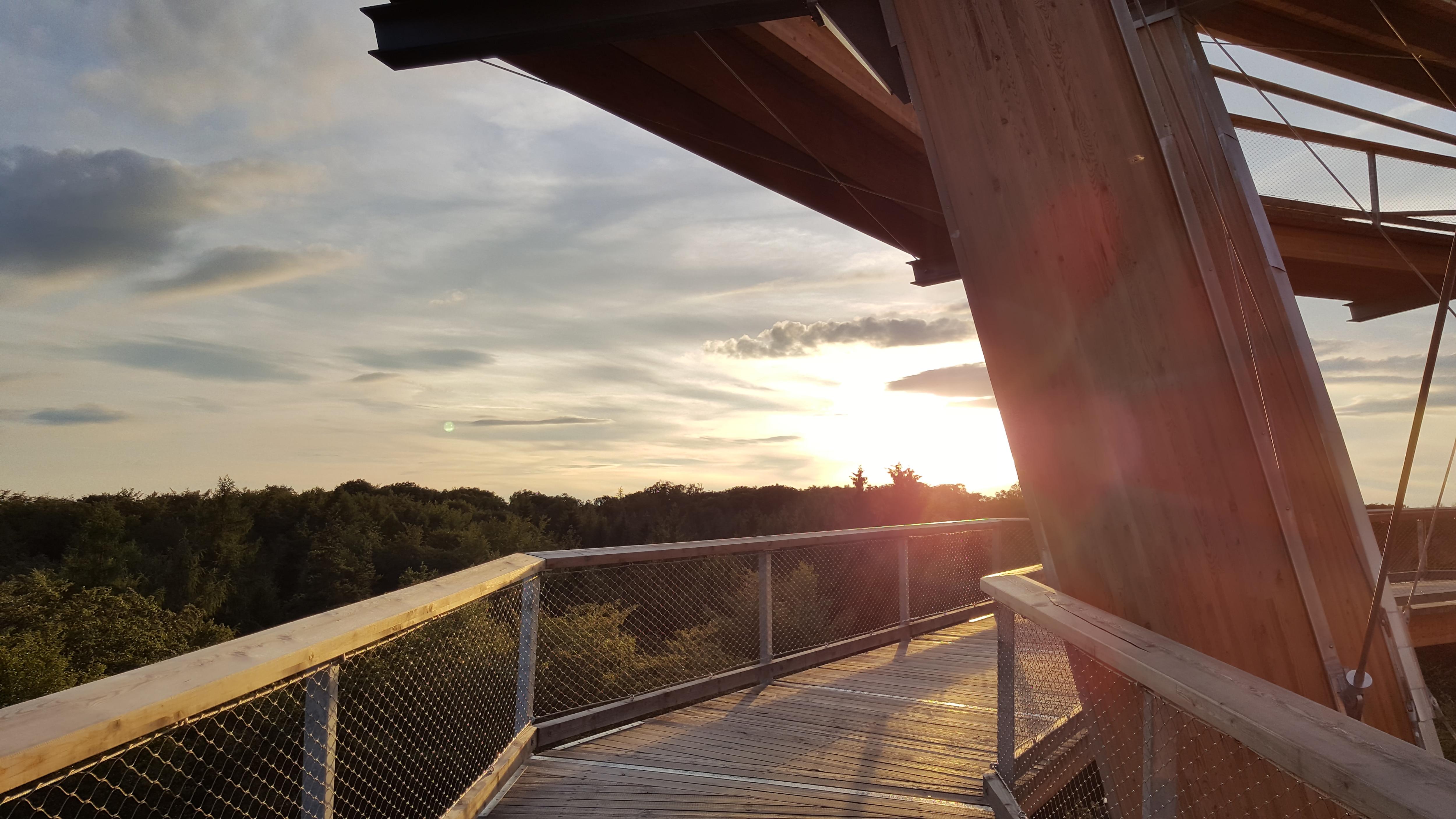 Steigerwaldexpress Sonnenuntergang