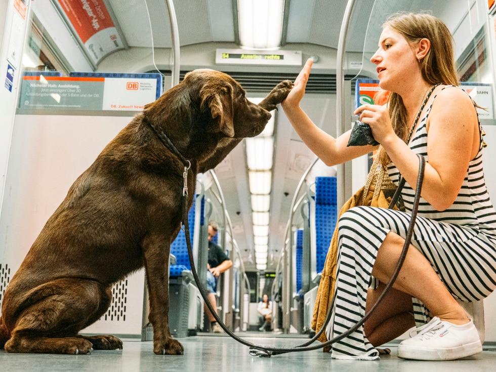 Hundebesitzerin mit Hund in der S-Bahn